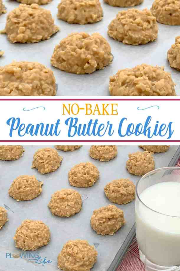 These easy drop cookies are are Best No-Bake Peanut Butter Cookies ever! Rich and sweet these peanut butter cookies are a classic treat that can bemixed up in 15 minutes.
