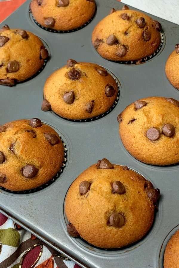 Full round top pumpkin muffins with chocolate chips added halfway through baking