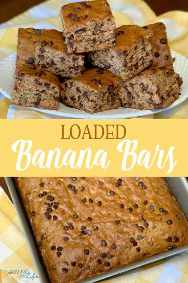 Loaded banana bars The chocolate chips are our favorite ingredient, but the applesauce keeps them moist, while cranberries and walnuts really round out the flavor in this easy breakfast bread.