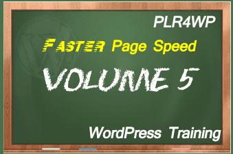 plr4wp Volume 5 WordPress Page Speed