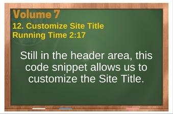 PLR 4 WordPress Vol 7 Video 12 Customize Site Title