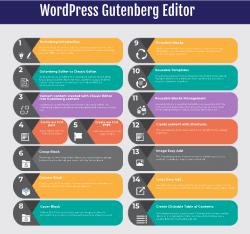 PLR For WordPress Infographic on the Gutenberg Editor