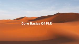 Core Basics Of PLR