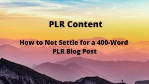 How to Not Settle for a 400-Word PLR Blog Post