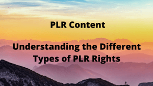 Understanding the Different Types of PLR Rights