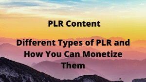 Different Types of PLR and How You Can Monetize Them
