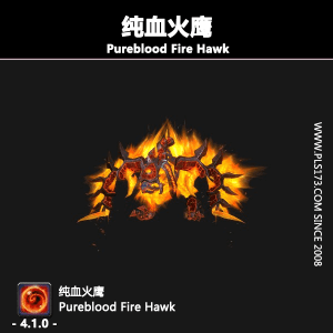 纯血火鹰/Pureblood Fire Hawk@PLS173.com