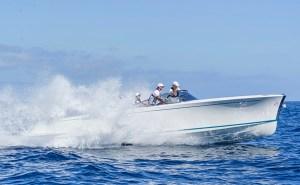 Vita Lion electric boat