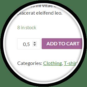 Decimal Quantity Feature