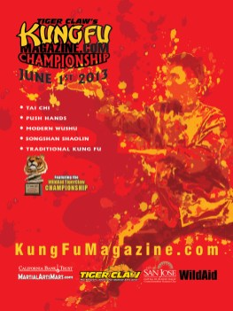 Championship Poster: illustration & graphic design