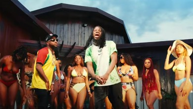 Stonebwoy activate music video davido song mp3