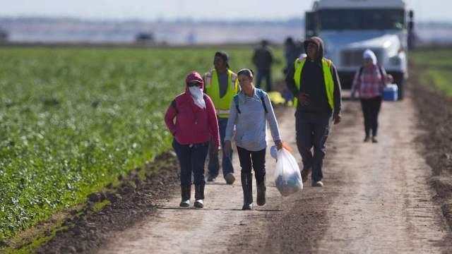 migración esclavitud moderna