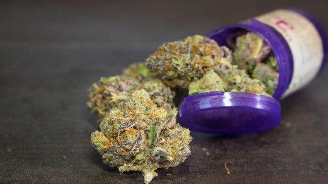 medicina marihuana