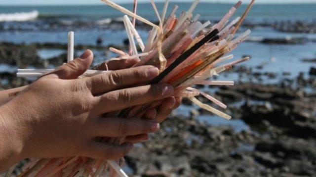 popotes, daño ambiental, mar, contaminación, popotes mar, mano popotes, playas contaminadas