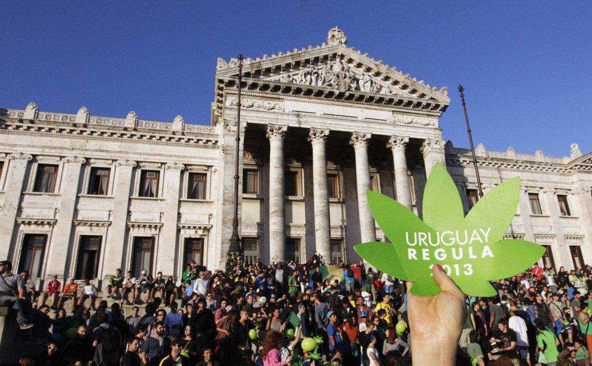 Uruguay aprueba venta de marihuana en farmacias