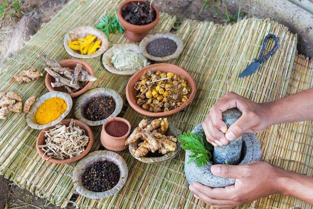 medicina tradicional ciencia