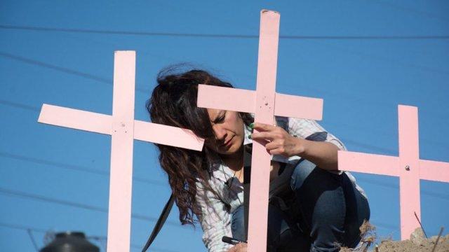cmdx feminicidios, alerta de género, delegaciones, cruz rosa, mujer cruz,