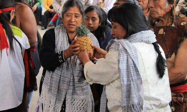 trueque tiangusitenco, tianguis trueque, trueque indígena, Consejo Indígena