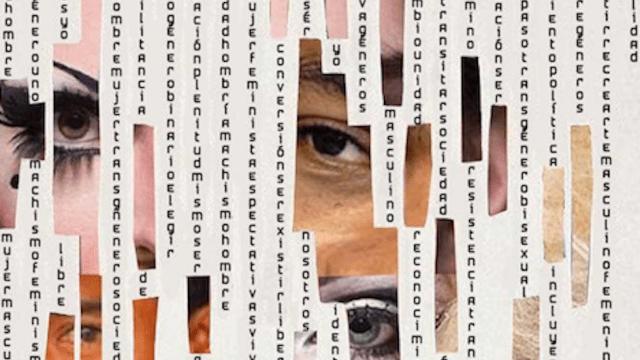 manual, trans, resistencia, letras, política, resistir, organización