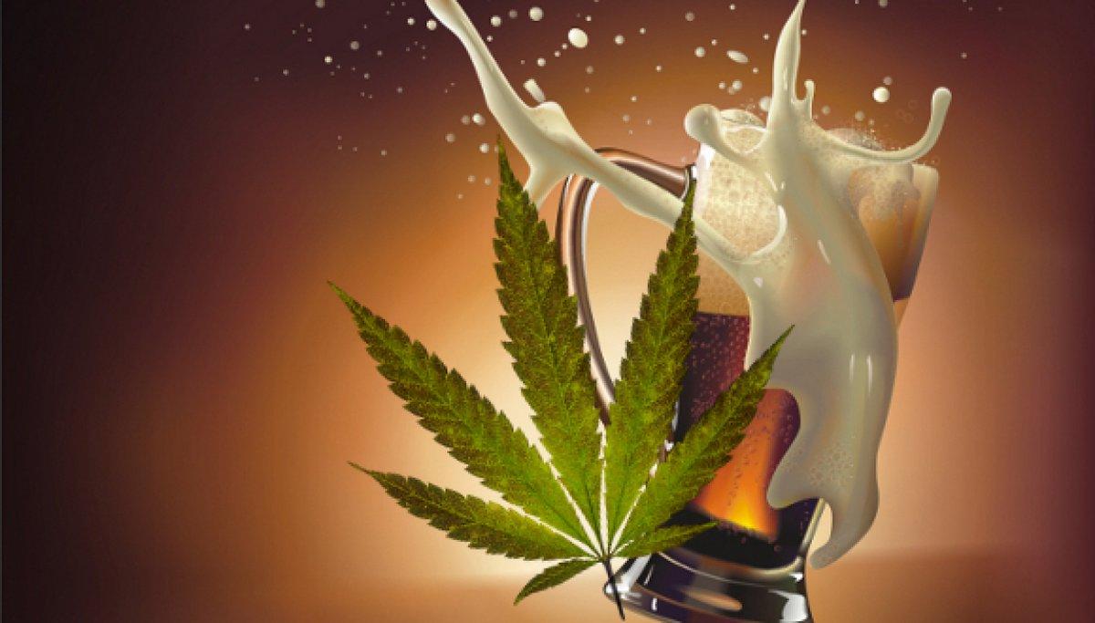Corona Estados Unidos invierte en compañía canadiense de marihuana