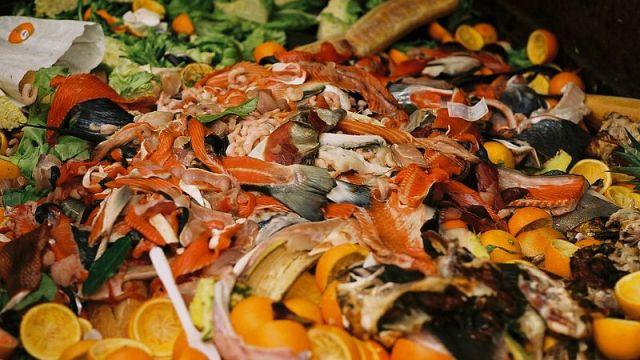 México desperdicia 20 millones de toneladas de comida al año