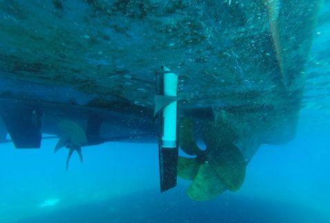 Descubren explosivos no detonados en embarcación del padre de Borge