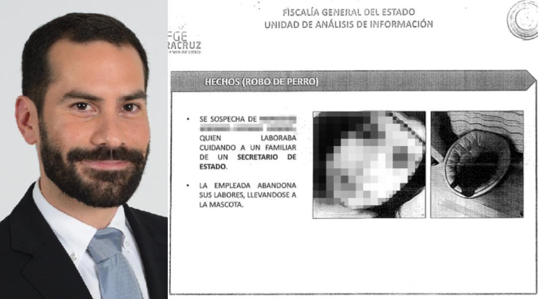 FGE de Veracruz realizó operativo para... un perrito