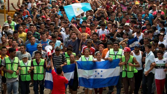 ONGs presentan solicitud de intervención a Segob