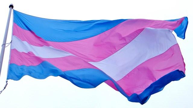 Niños, Trans, Transexuales, Escuela