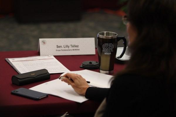 Lilly Téllez, en su curul del Senado