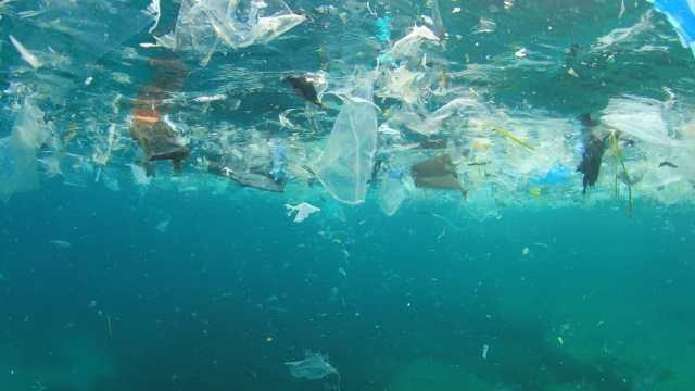¿Salvará al mundo prohibir plásticos desechables?