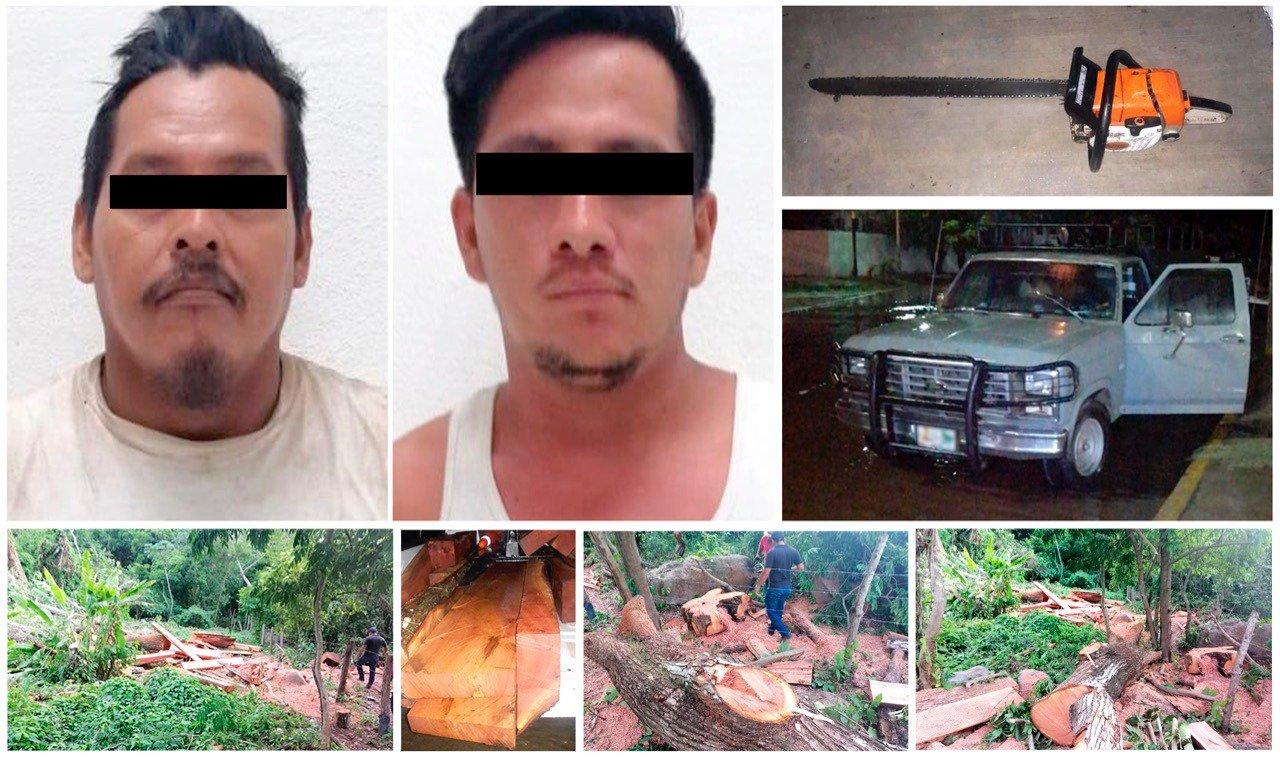 Sentencian a dos delincuentes por ecocidio en Chiapas
