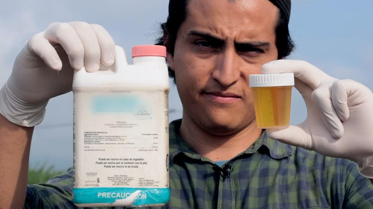 En este municipio de Jalisco, los niños orinan pesticidas