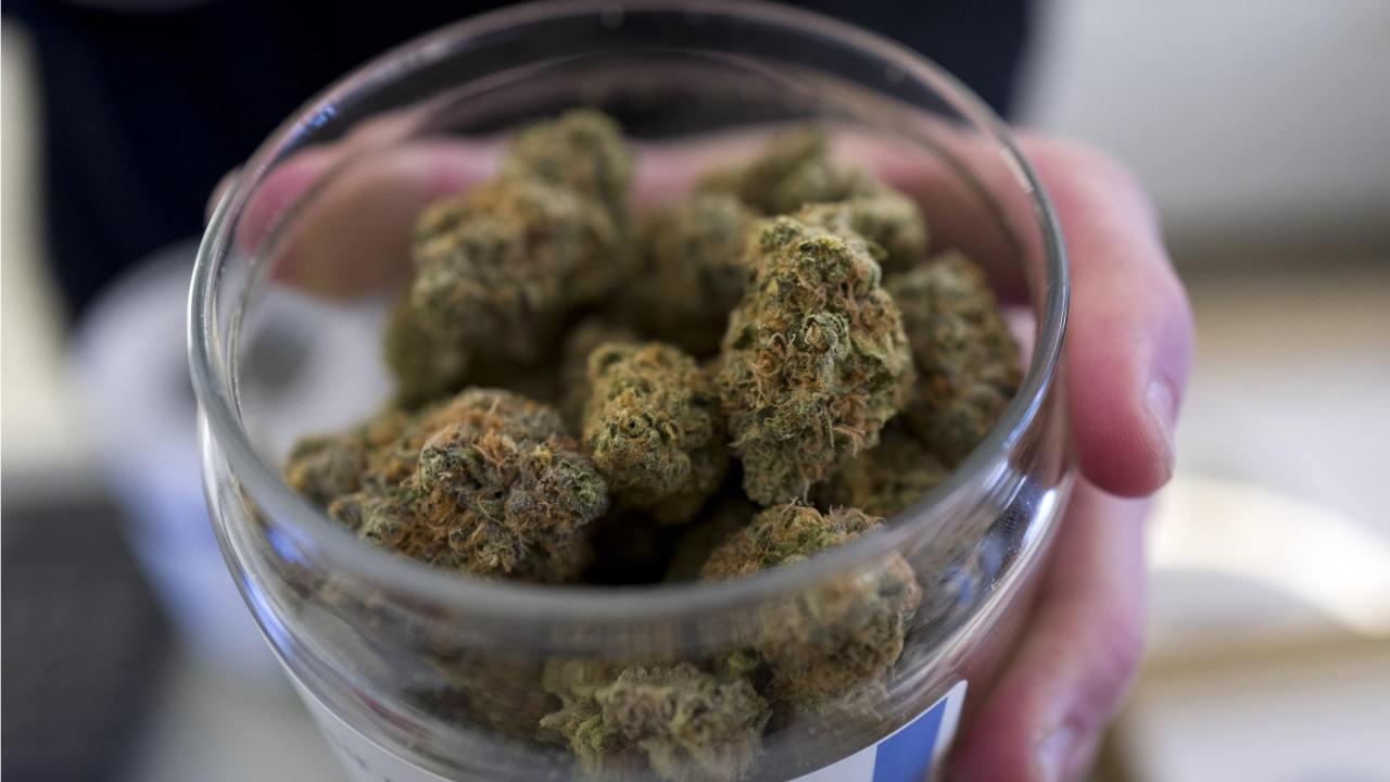 Morena propone que el gobierno compre y venda marihuana