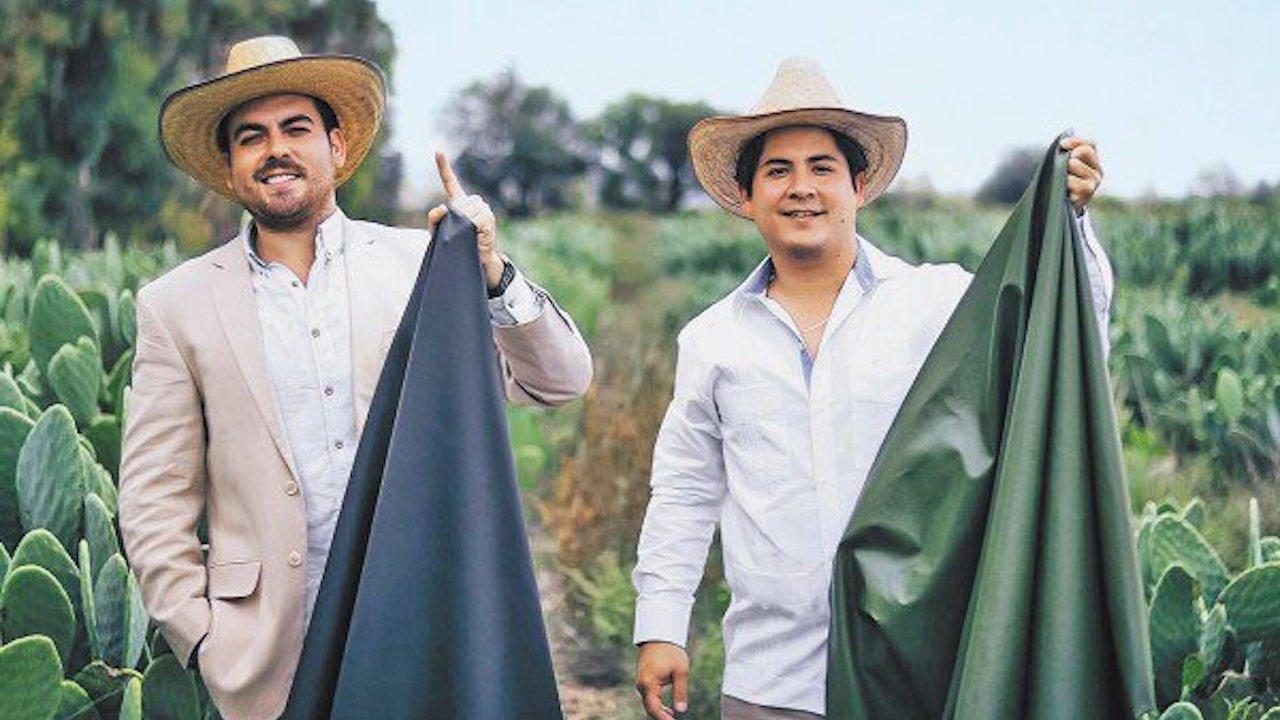 En México crean piel orgánica a partir del nopal