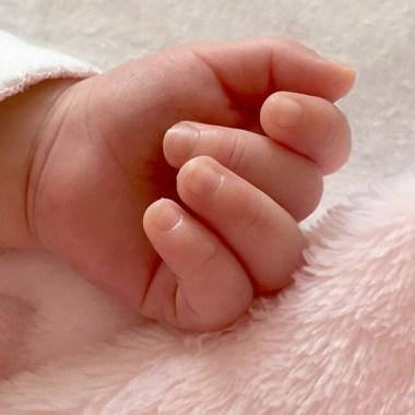 18/11/19, Veganos, Bebé, Muere, Desnutrición