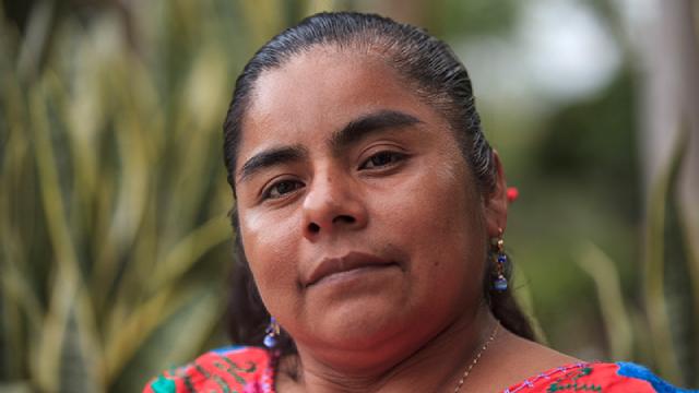 Hermenilda Tiburcio Activista Lider Mexico Decada