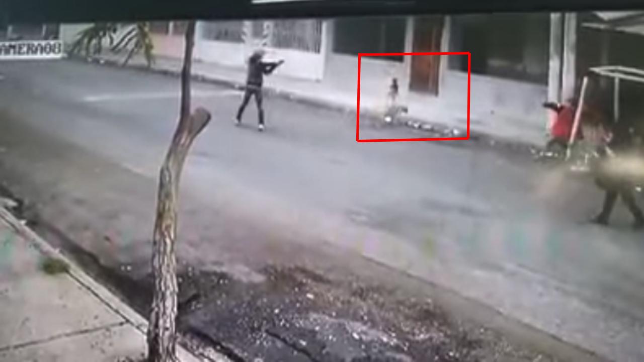Perros salvan a mujer de asalto a mano armada.