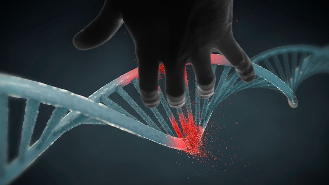 Banco de ADN