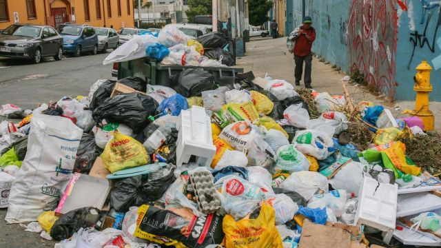 Al 78% De Los Mexicanos Les Interesa Poco o Nada El Medio Ambiente