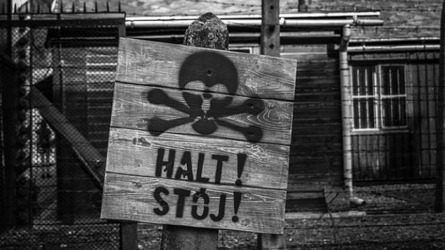 Auschwitz Liberacion