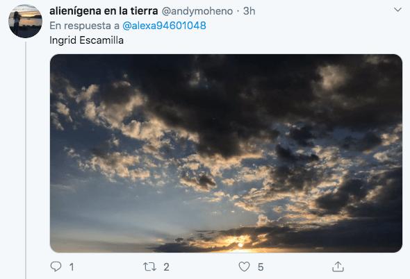 Ingrid Twitter
