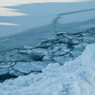 Clamidia, Océano, Ártico, Fondo Mar