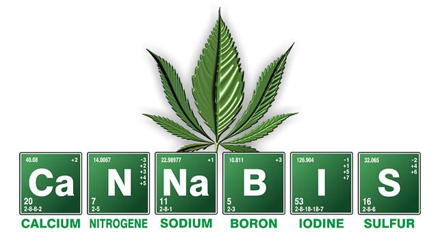 4 20, Dia Internacional De La Marihuana, Dia Internacional Del Cannabis, 20 Abril