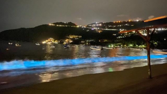 Biolumniscencia, Microorganismos, Playas Acapulco, Coronavirus