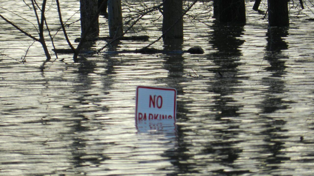Efectos del cambio climático que se pueden observar
