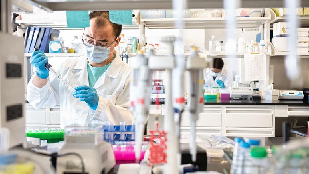 Encuentran coronavirus en el semen de pacientes infectados