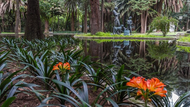 cuando-reabren-bosque-chapultepec-bosque-tlalpan-bosque-aragon