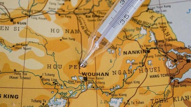 laboratorio-wuhan-cepas-coronavirus-murcielago
