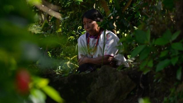 Se han registrado 350 ataques a tzotziles de Aldama, lo que significa un incremento en los ataques a indígenas desplazados en Chiapas